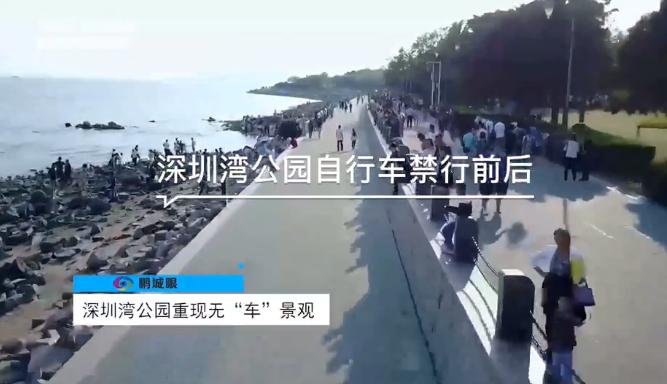 深圳湾公园骑行攻略来了:避开这个时段一周7天任你行