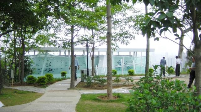 莲花山公园山顶公厕突然被拆遭吐槽 原址将建新公厕设计图亮了