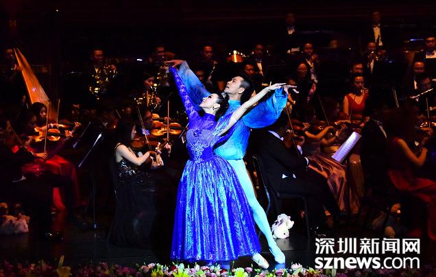 2019深圳音樂會在深舉行 1600市民現場觀看