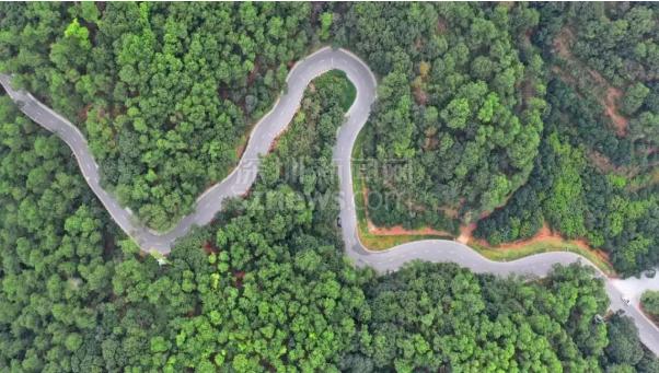 【IN视频】光明马拉松山湖绿道美如画 开放时间还得再等等