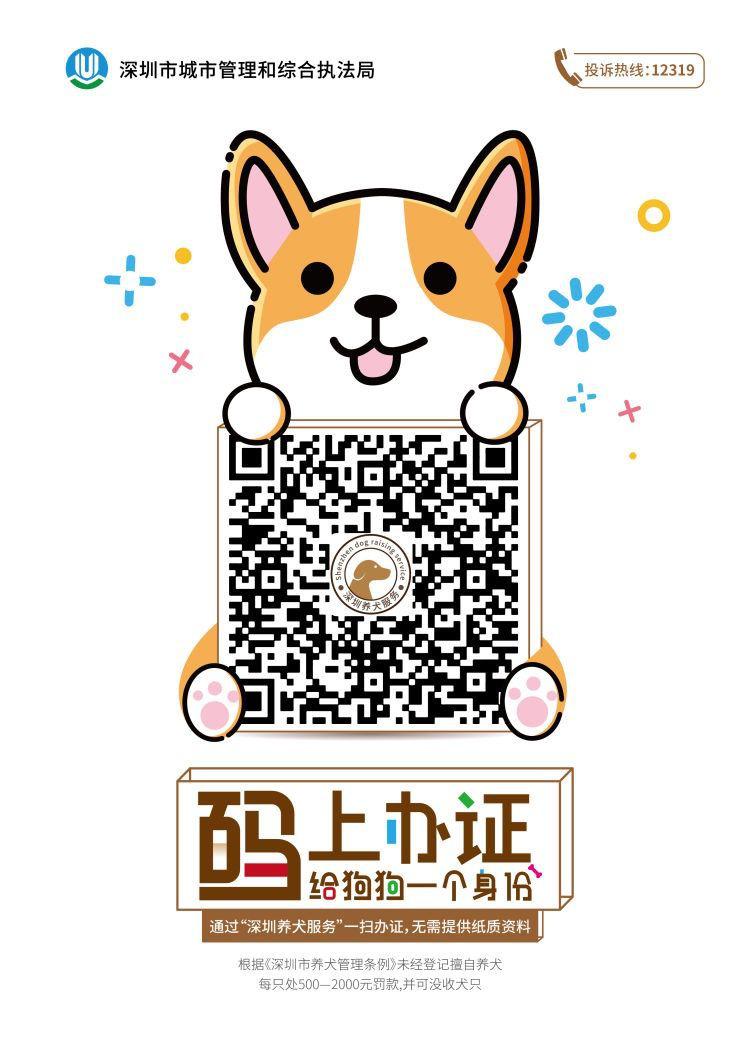 犬主们快办理电子养犬证 ,7月1日起对无证犬只实施处罚