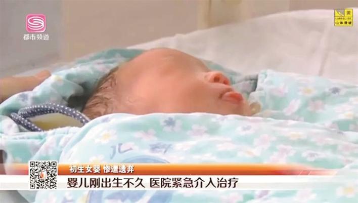 刚出生女婴被遗弃绿化带1小时 公交司机上班途中伸手救助图片