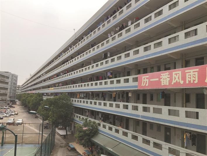 """深圳""""最长宿舍楼""""绵延1公里?记者去现场看了看……图片"""