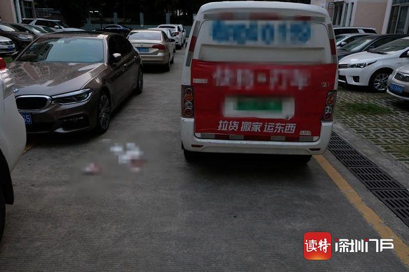 """廣州螞蟻運輸搬遷 公司8歲女童停車  場內玩耍被撞身亡 請讓孩子遠離""""死"""
