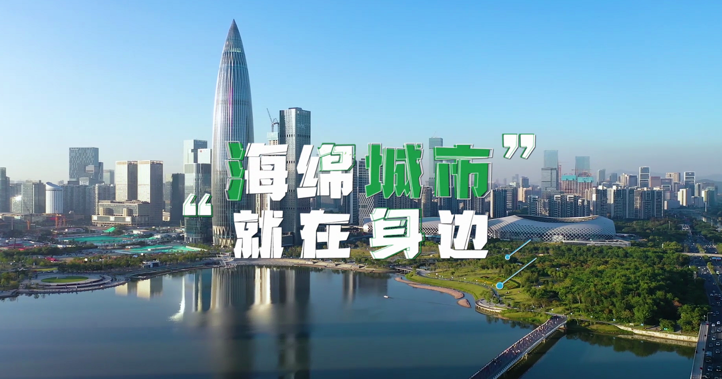 在现场|深圳海绵城市建设如何做?这个启动仪式告诉你