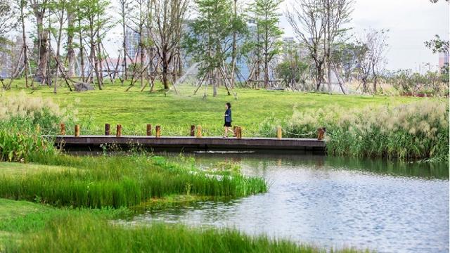 2020年深圳海绵城市建设项目奖励申报正式启动 5.14亿元奖励等你来拿!