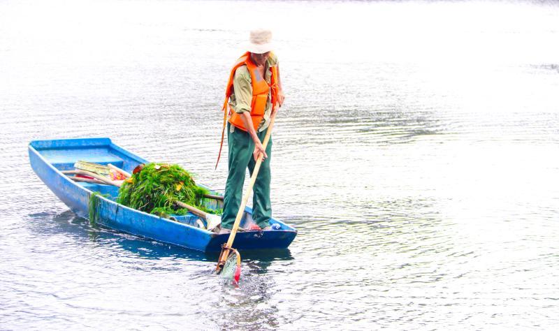 水清景美碧波荡漾!记者实地探访治理后的荔枝湖