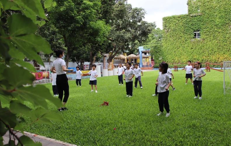 在现场|深圳2020年幼儿园招生政策在线访谈实录