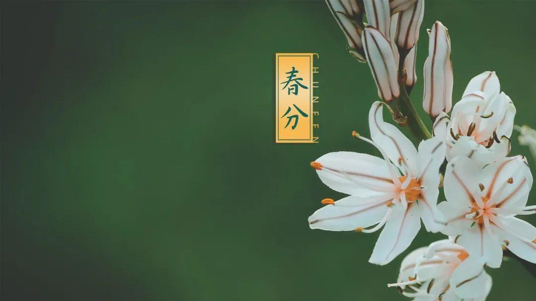 罗医集团罗湖中医院治未病科二十四节气养生提醒丨春分宜寒热互补