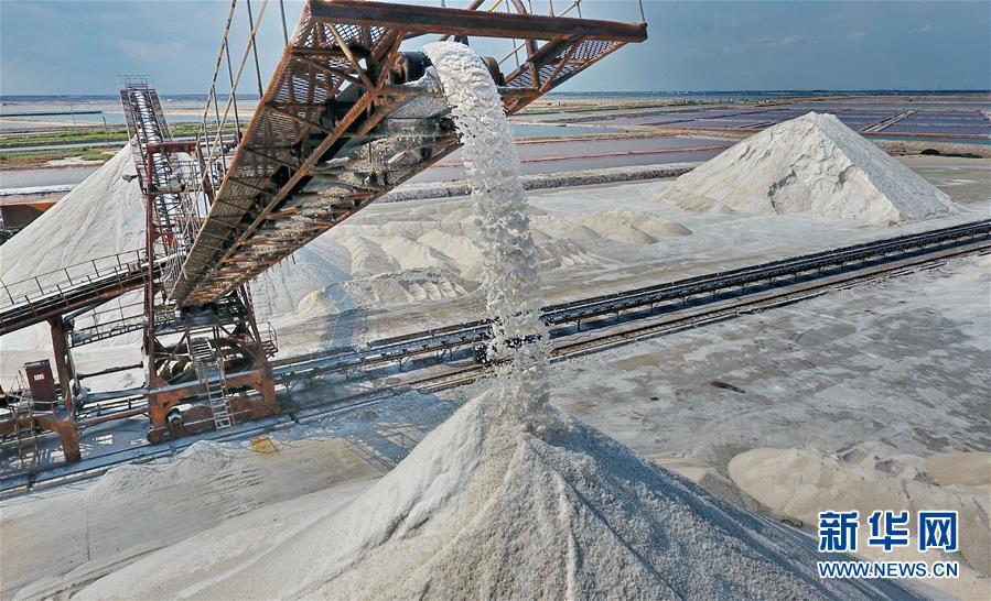 (经济)(1)收获海盐