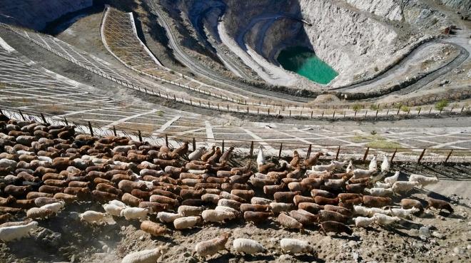 新疆阿勒泰牧民转场
