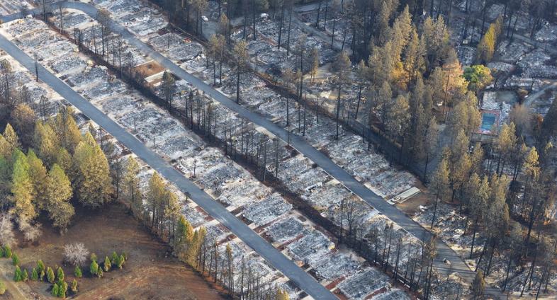 """""""坎普""""山火使加州天堂变""""地狱"""" 已致88人死亡近2万座建筑被毁"""