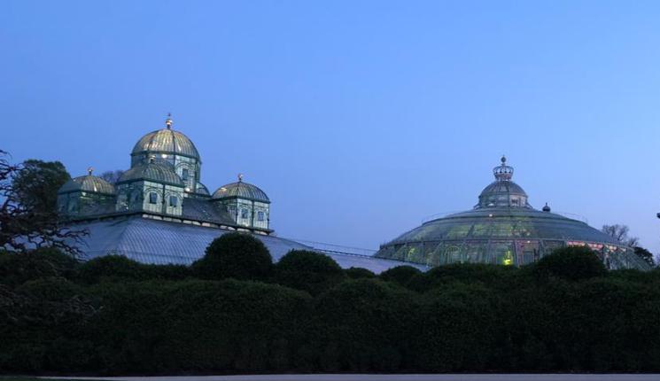"""探访比利时皇家温室  36根梁柱支撑起""""冬季花园"""""""
