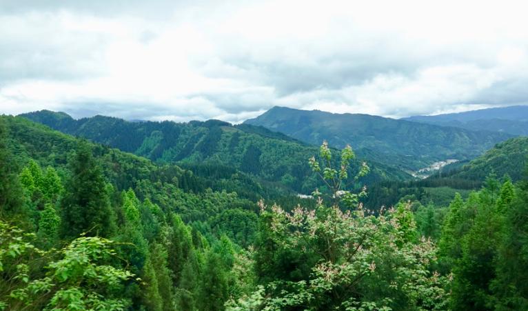 """全国最大的森林公园升级   被称为""""最美桌山"""""""