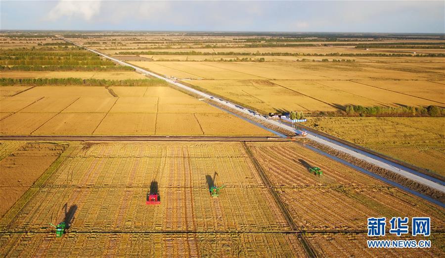 《快速时时彩怎么玩》_生态中国·叠翠兴安筑屏障