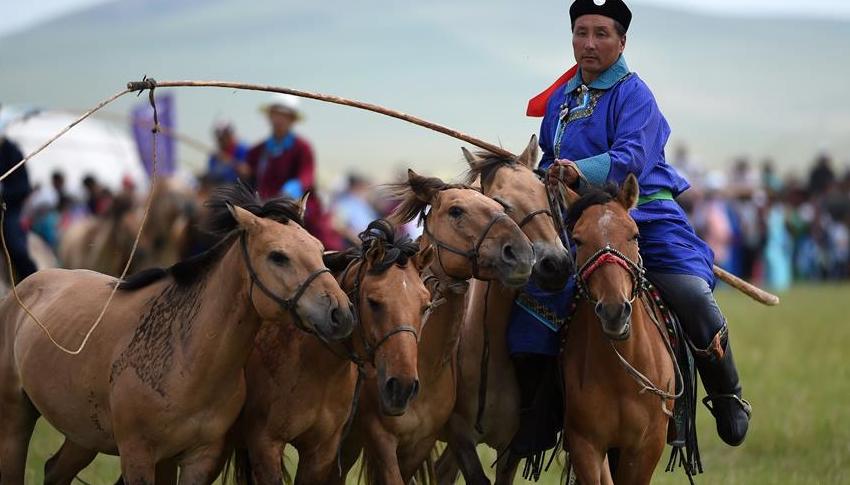 内蒙古东乌珠穆沁旗草原举行马文化活动