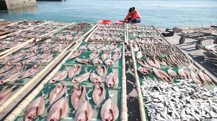 青島漁民古法曬魚 口感勁道別有風味