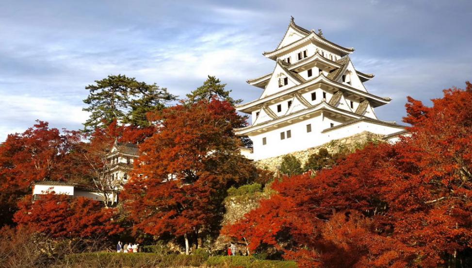 这条秋景如画、知名度不高的观光铁道藏在日本中部山区(视频)