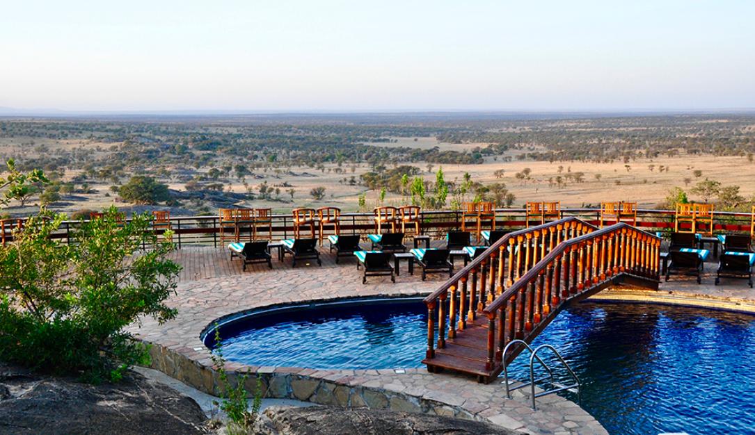 奇观天下|探秘建在非洲草原上的星级酒店 游客与野生动物共眠