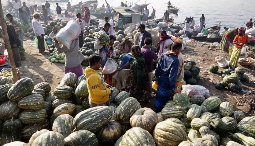 探访孟加拉恒河渡口  一片繁忙丰收景象