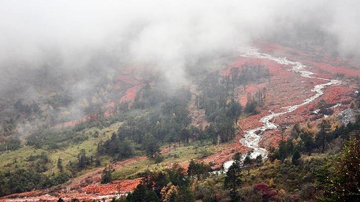 奇观天下|原来红石滩景观是这样形成的